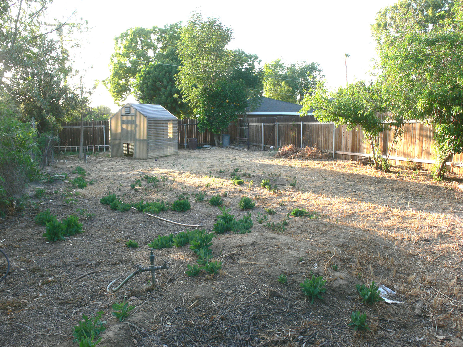 """The """"south 40""""! This is a whole separate fenced area that could be utilized for big boys' toys, pool, garden, orchard, etc. There is water plumbed back to this area also!"""