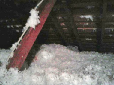 NO COST Attic Insulation!